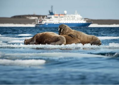 Waterproof Cruises & Expeditions