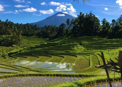 Overwinteringsreizen Bali Indonesië