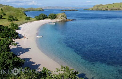 Komodo-National-Park-Pantai-Merah-Red-Beach-snorkeling-Indonesia-Indotracks
