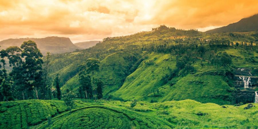 Nuwara-Aliya-Sri-LankaST-1200x450